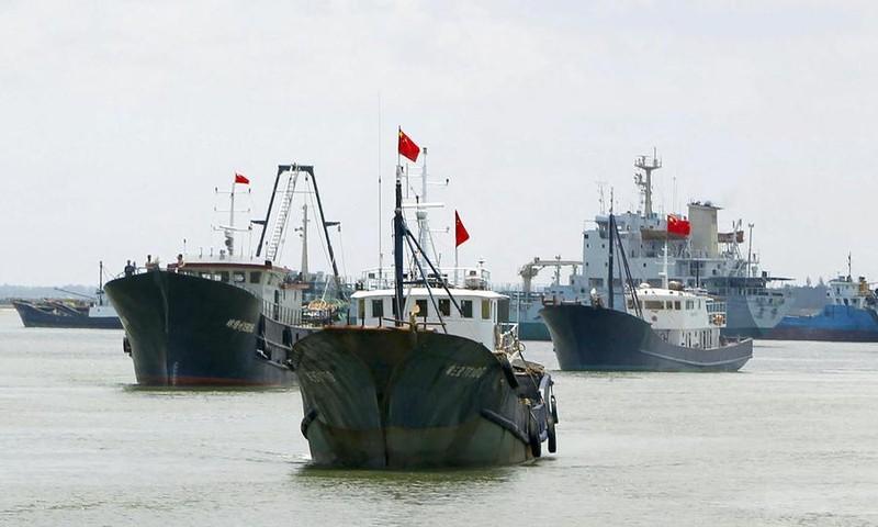 Từ bãi Tư Chính nhận diện lực lượng dân quân biển Trung Quốc - ảnh 2