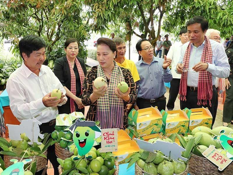 Chủ tịch Quốc hội khen Đồng Tháp chuyển đổi tư duy nông nghiệp - ảnh 1