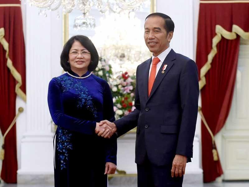 Phó Chủ tịch nước hội kiến Tổng thống Indonesia - ảnh 1