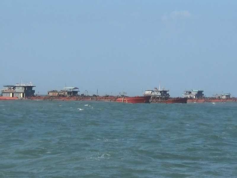 Tái diễn nạn sa tặc lộng hành trên biển Cần Giờ - ảnh 2
