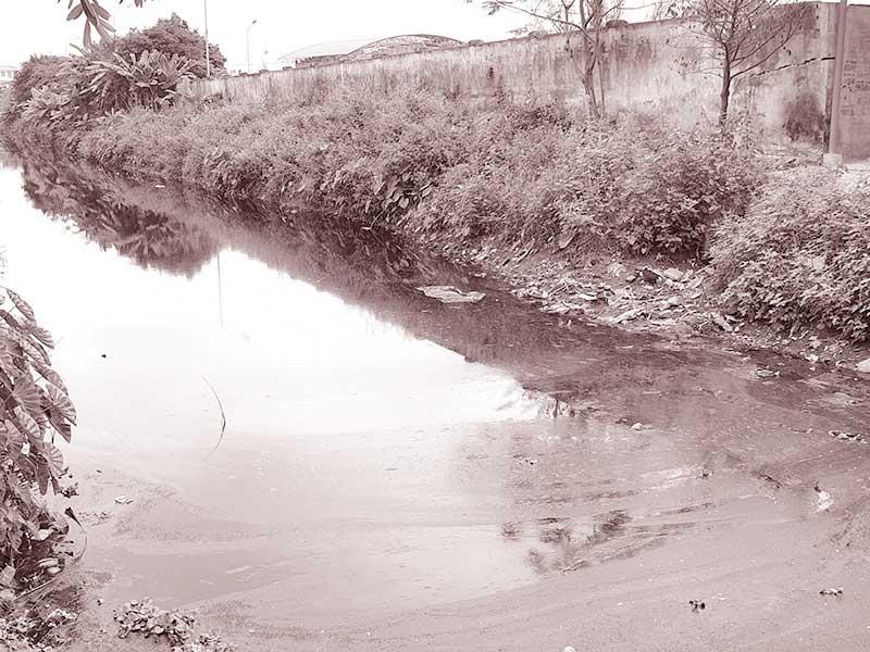 Nguồn ô nhiễm vây kín các sông cấp nước ngọt ở Hải Phòng - ảnh 1