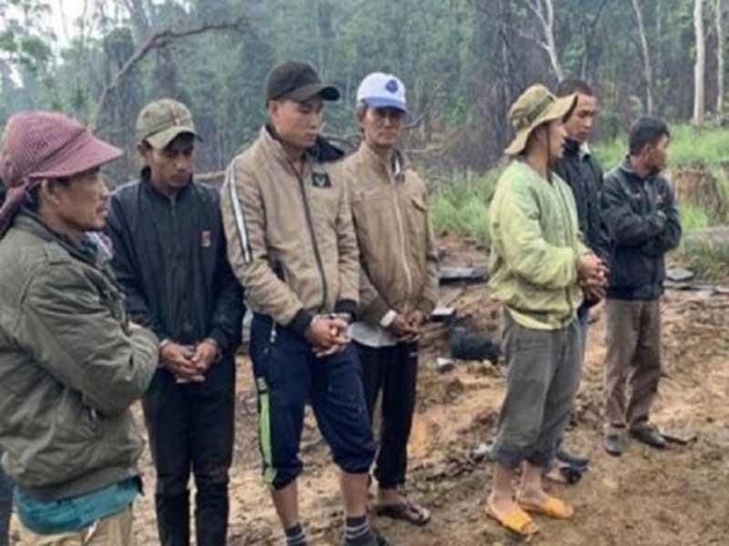 Bắt giam 9 người từ Khánh Hòa sang Đắk Lắk phá rừng - ảnh 1