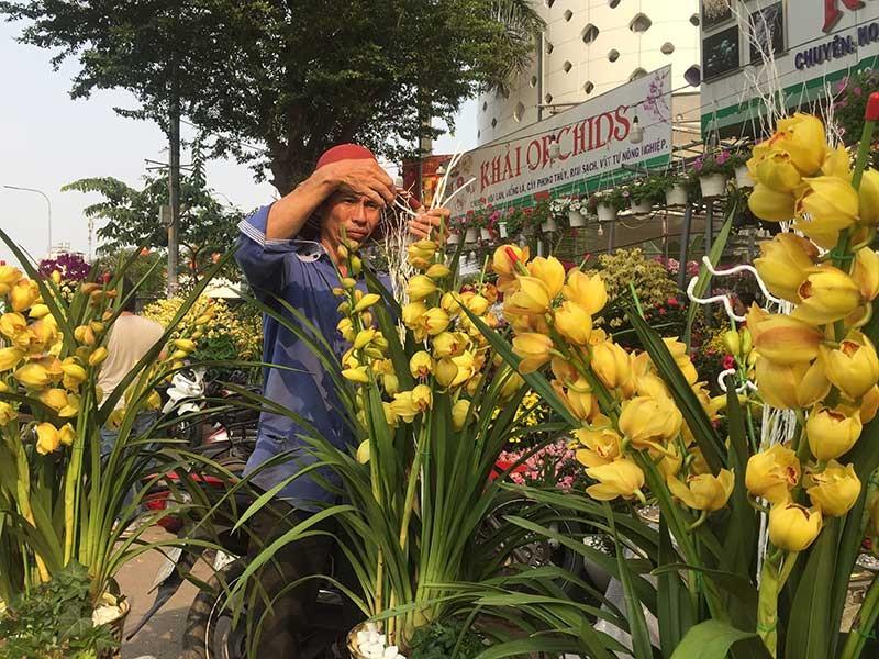 Hoa tết Việt Nam thắng đậm hoa Trung Quốc - ảnh 2