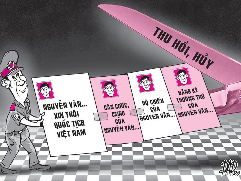 Thôi quốc tịch Việt Nam, giấy tờ cá nhân sẽ bị thu hồi - ảnh 1