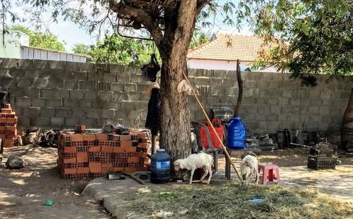Nhịp sống ở thôn Văn Lâm 3 sau những ngày cách ly - ảnh 4