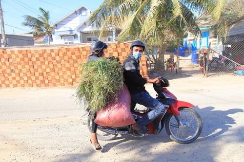 Nhịp sống ở thôn Văn Lâm 3 sau những ngày cách ly - ảnh 9