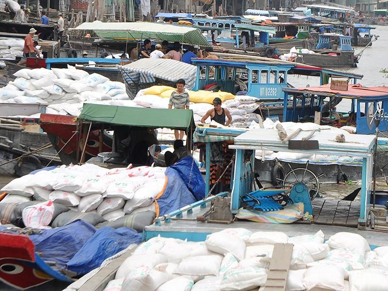 Xuất khẩu gạo: Cần công khai, minh bạch, bình đẳng - ảnh 2