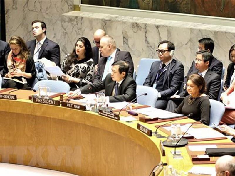 Việt Nam hoàn tất sớm báo cáo tháng chủ tịch Hội đồng Bảo an - ảnh 1