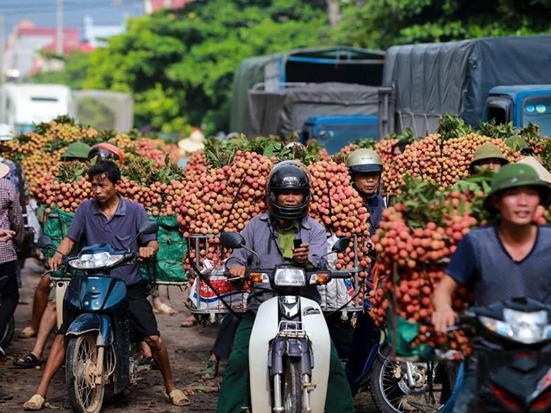 Nông sản Việt mở rộng thị trường ngoài Trung Quốc - ảnh 1