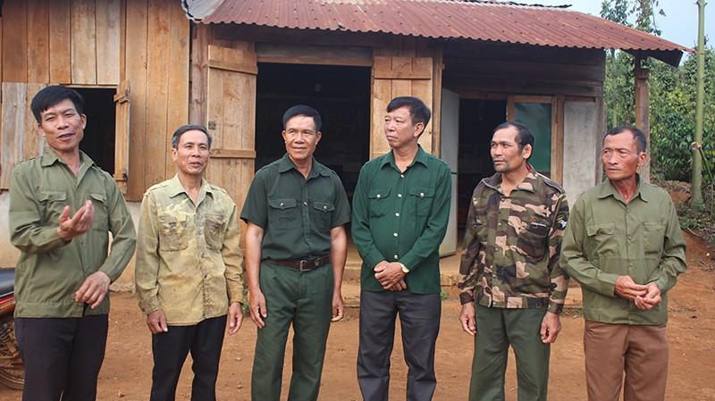Hủy 2 bản án kết tội 6 cựu chiến binh hủy hoại rừng - ảnh 1