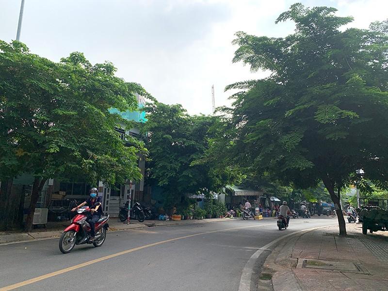 Đặt tên đường cho 2 GS Trần Đức Thảo và Trần Văn Khê - ảnh 2