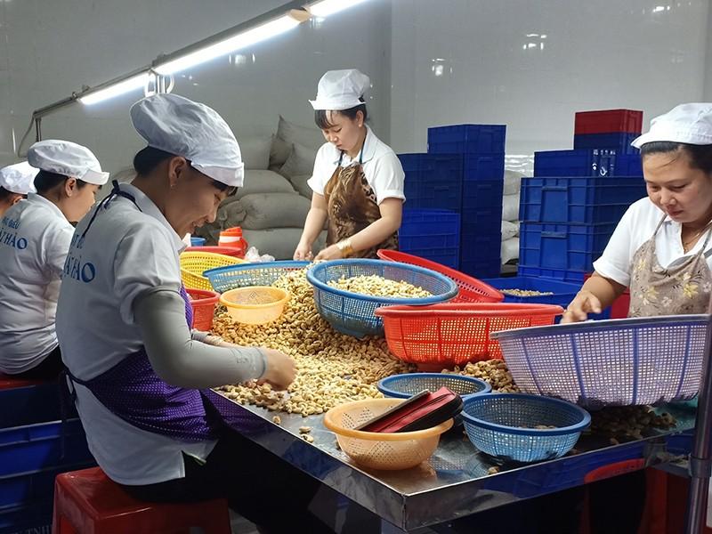 Gạo, tôm, cá Việt vào thị trường 15.000 tỉ USD - ảnh 1