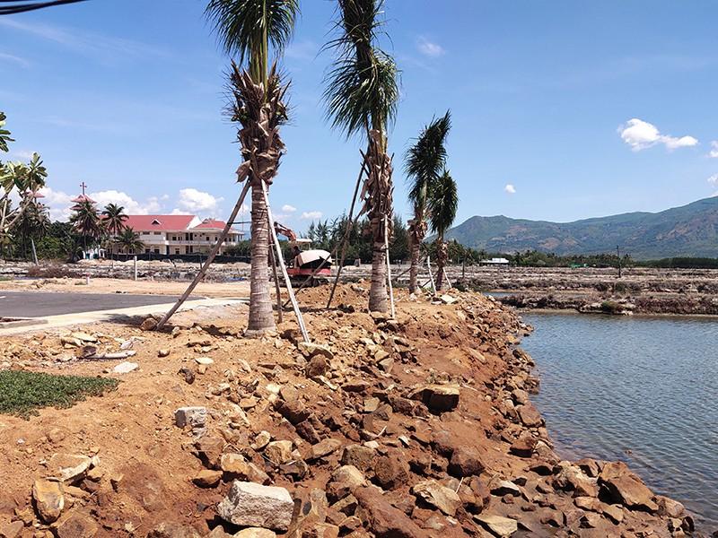 Phân lô, bán nền lại bát nháo ở Khánh Hòa - ảnh 1