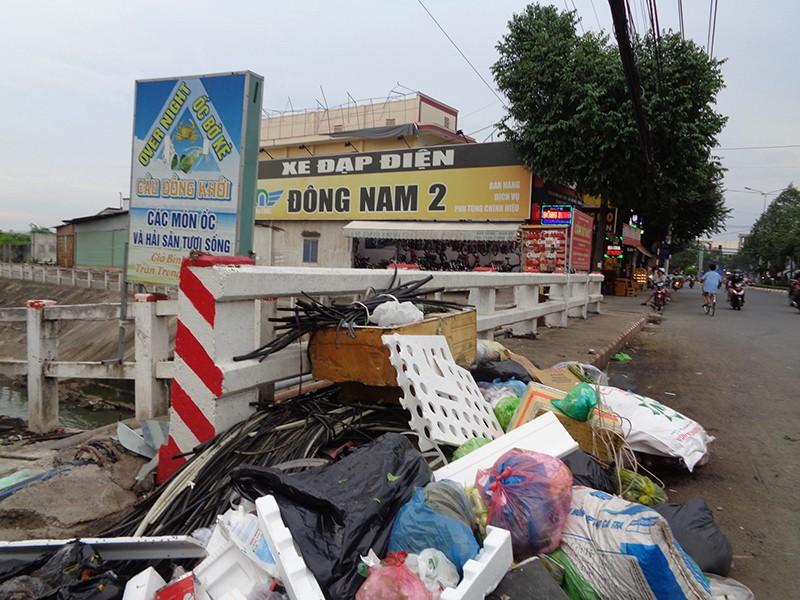 Cầu ô nhiễm vì rác - ảnh 1
