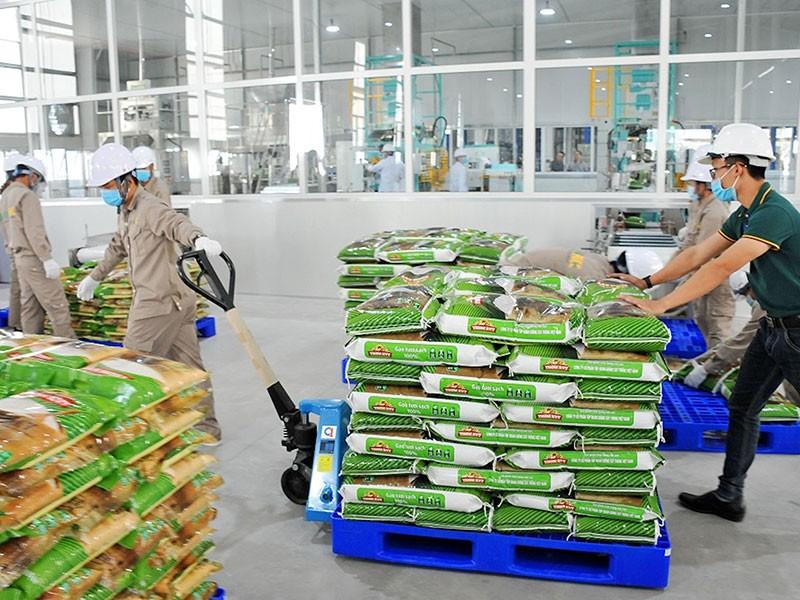 Niềm vui kép của gạo Việt - ảnh 1