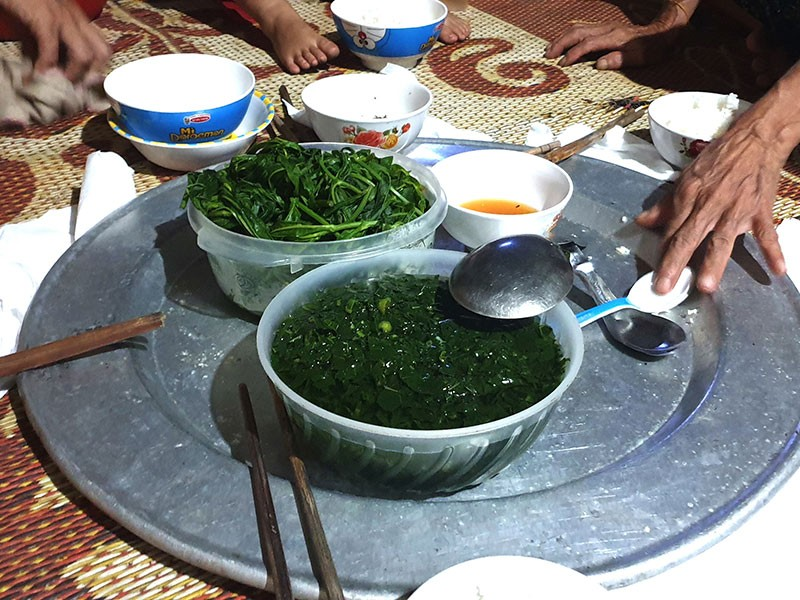Làm đường nông thôn mới ở Thanh Hóa: Tận thu triệt để - ảnh 1