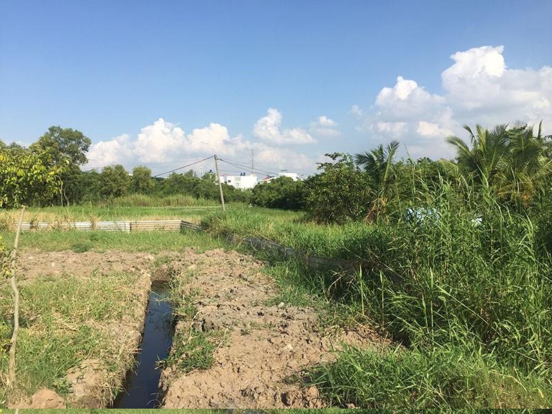 53 dự án khu dân cư ở huyện Bình Chánh có vấn đề - ảnh 1