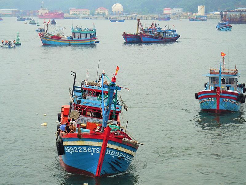 Chiều nay, bão đổ bộ Quảng Bình - Quảng Nam - ảnh 3