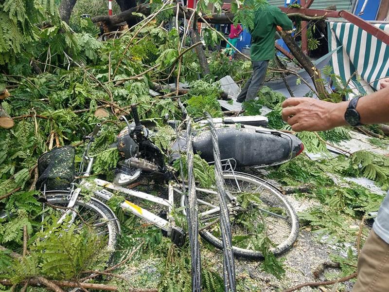 Bão số 5 gây thiệt hại nặng cho miền Trung - ảnh 1