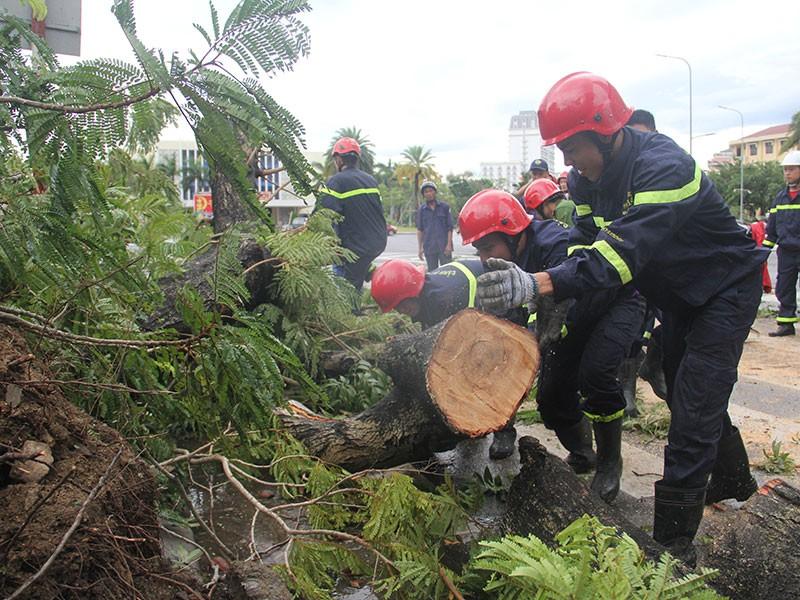 Bão số 5 gây thiệt hại nặng cho miền Trung - ảnh 2