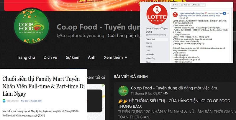Co.op Food, Circle K... không tuyển người qua bên thứ hai - ảnh 1