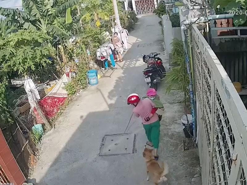 Hàng xóm mất lòng nhau vì chuyện chó cắn - ảnh 1