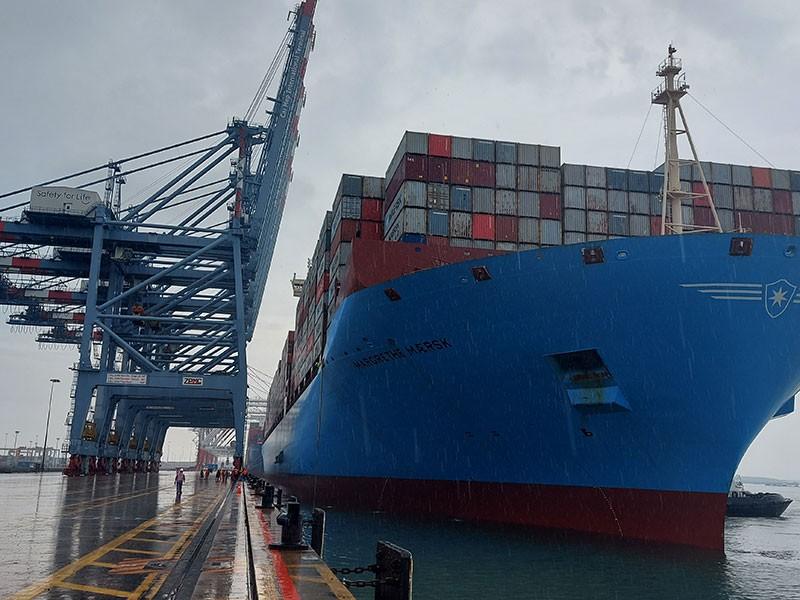 Tàu container lớn nhất thế giới cập cảng quốc tế Cái Mép - ảnh 1