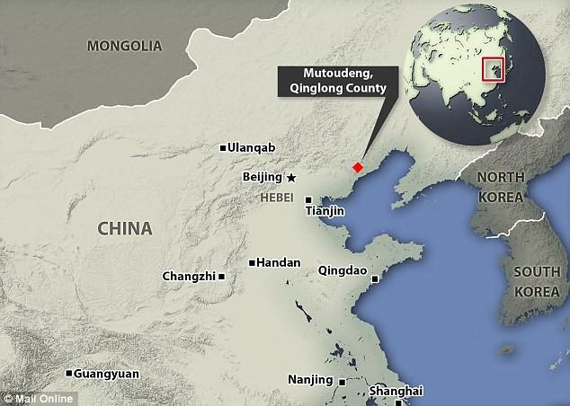 Phát hiện hóa thạch 'khủng long dơi' tại Trung Quốc - ảnh 2