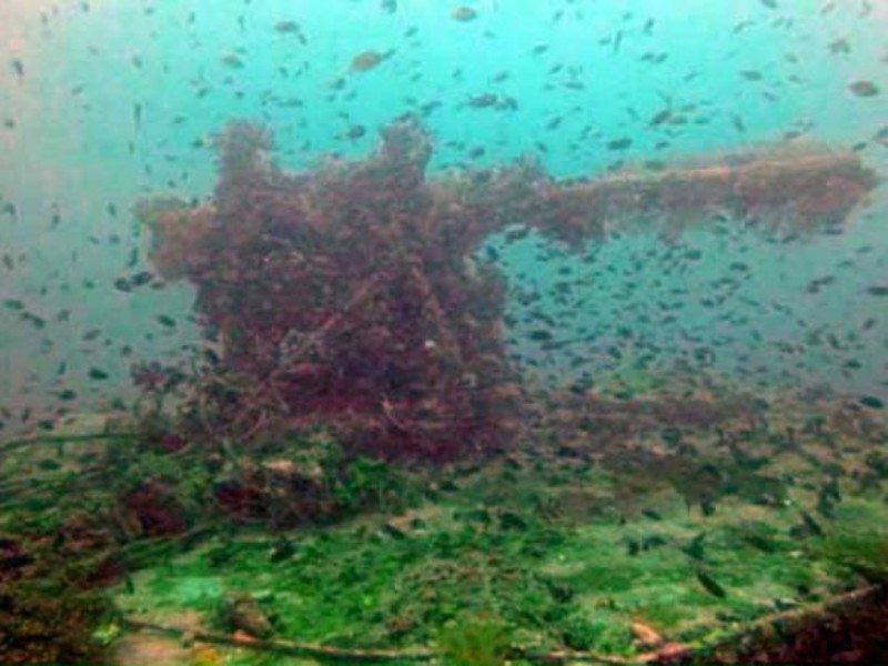 Phát hiện xác chiến hạm Nhật đến VN bị đắm năm 1944