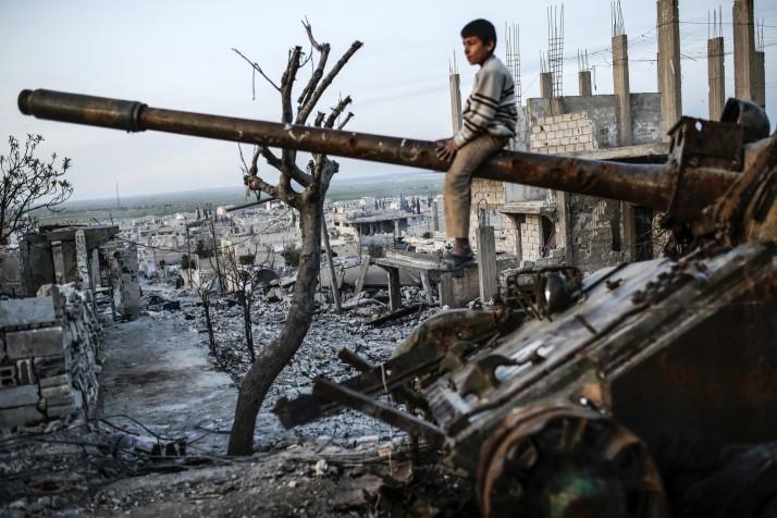 Tổng thống Putin xác nhận lệnh ngừng bắn tại Syria - ảnh 2