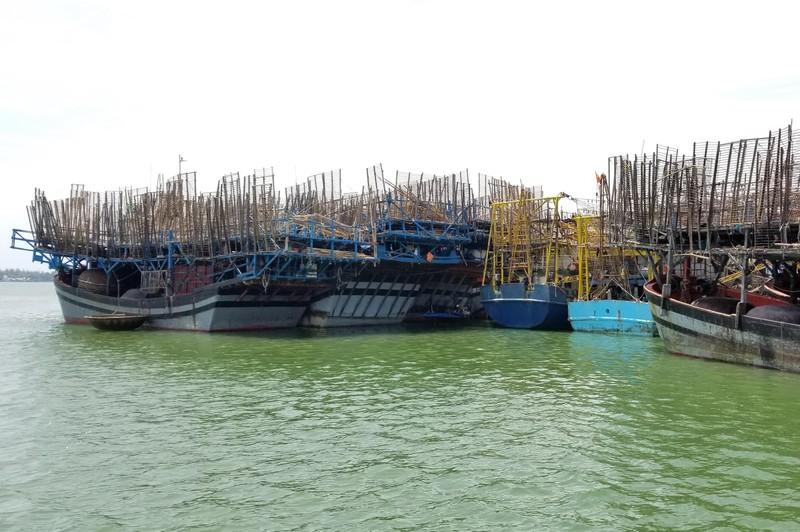 Tàu câu mực 44 ngư dân bị nạn ở vùng biển Trường Sa  - ảnh 1