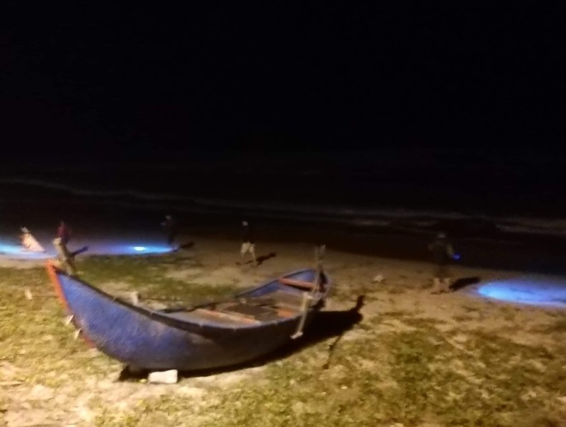 Nóng: 25 bánh heroin trôi dạt vào bờ biển Quảng Nam - ảnh 2