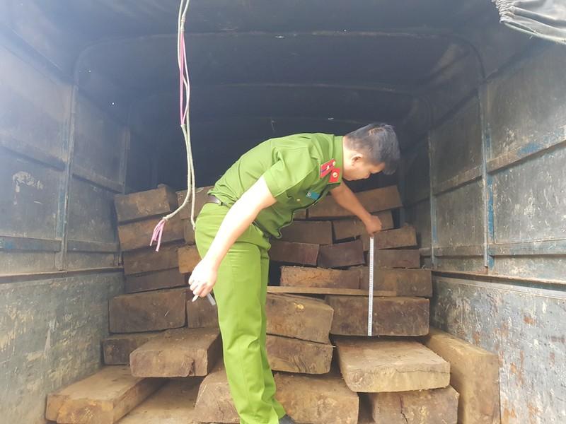 Tháo hết ghế trên xe khách để chở gỗ lậu - ảnh 2