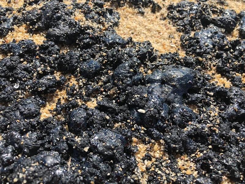 Chất màu đen trôi dạt vào bờ biển Quảng Ngãi - ảnh 2