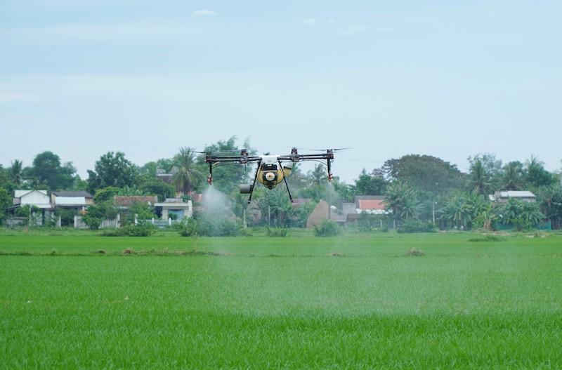 Dùng thiết bị bay phun thuốc, phân bón trên đồng lúa - ảnh 2