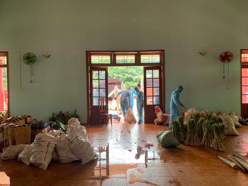 Người dân Trà My hái gần 10 tấn rau rừng gửi vùng dịch Đà Nẵng - ảnh 8