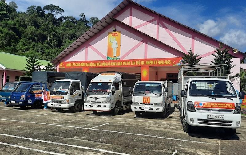 Người dân Trà My hái gần 10 tấn rau rừng gửi vùng dịch Đà Nẵng - ảnh 12