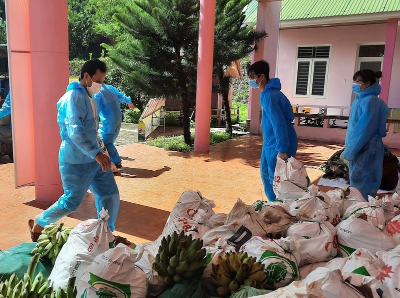 Người dân Trà My hái gần 10 tấn rau rừng gửi vùng dịch Đà Nẵng - ảnh 9