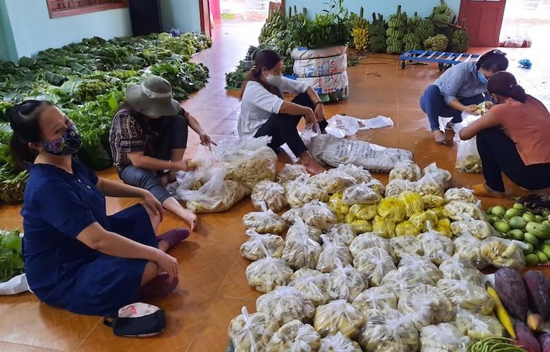 Người dân Trà My hái gần 10 tấn rau rừng gửi vùng dịch Đà Nẵng - ảnh 5