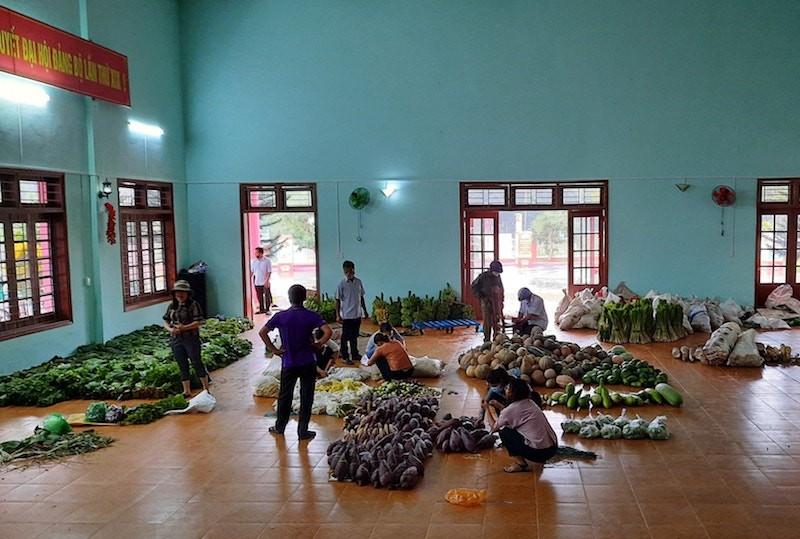 Người dân Trà My hái gần 10 tấn rau rừng gửi vùng dịch Đà Nẵng - ảnh 6