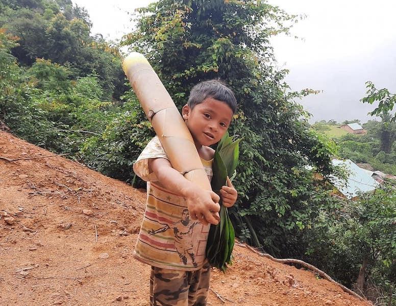 Người dân Trà My hái gần 10 tấn rau rừng gửi vùng dịch Đà Nẵng - ảnh 7