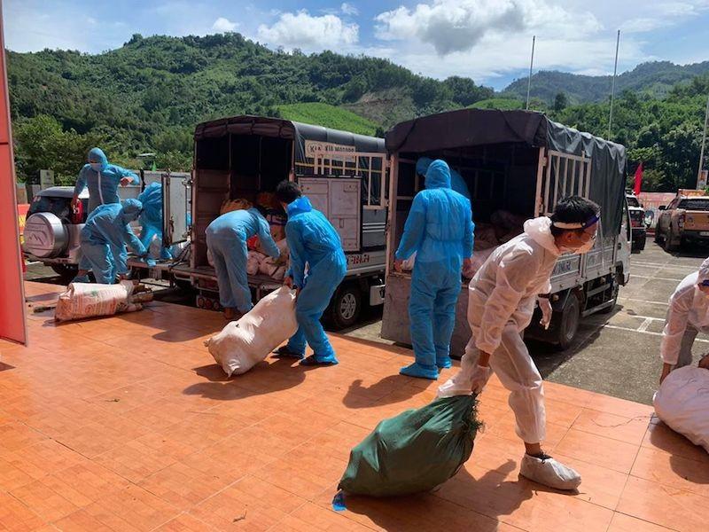 Người dân Trà My hái gần 10 tấn rau rừng gửi vùng dịch Đà Nẵng - ảnh 11