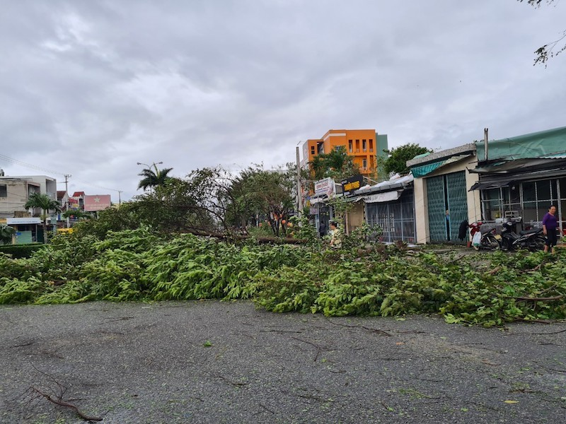 Quảng Nam ngổn ngang sau bão số 9 - ảnh 7
