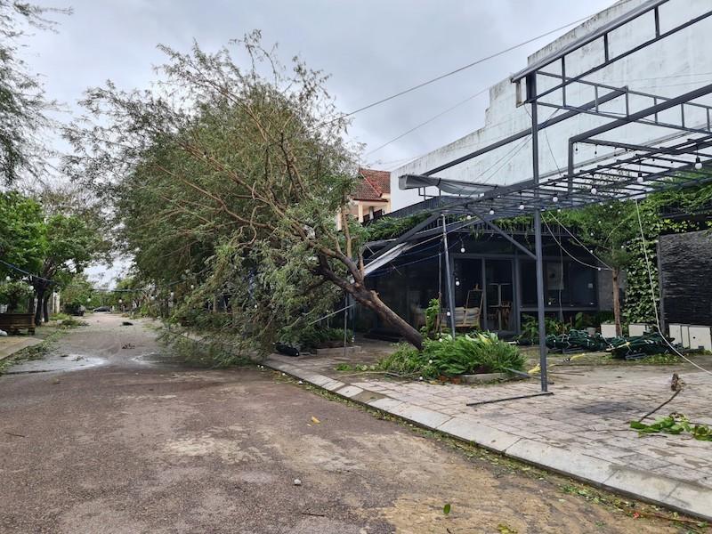 Quảng Nam ngổn ngang sau bão số 9 - ảnh 6