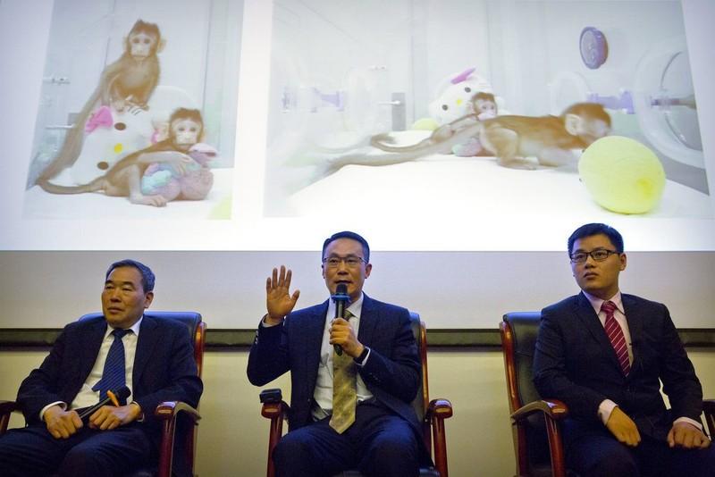 Trung Quốc nhân bản vô tính khỉ thành công - ảnh 3