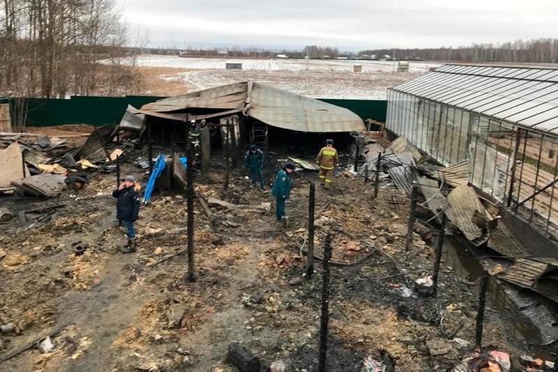 8 lao động nhập cư chết do cháy nhà ở Nga, nghi là người Việt - ảnh 1