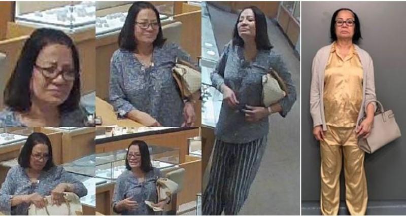 Một phụ nữ gốc Việt trộm nữ trang ở 3 bang nước Mỹ sắp hầu tòa - ảnh 1