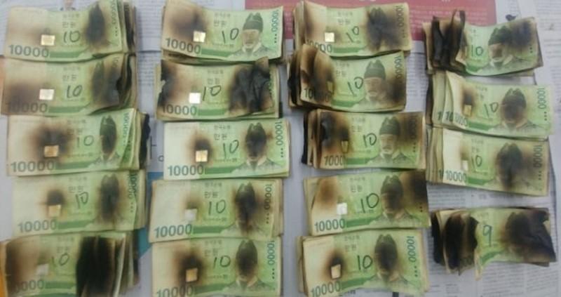 Lo COVID-19, người đàn ông Hàn Quốc bỏ tiền vào... lò vi sóng  - ảnh 1