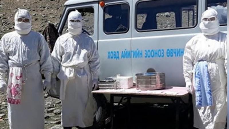 Nga trấn áp săn bắn sau báo động bệnh dịch hạch từ Trung Quốc - ảnh 1