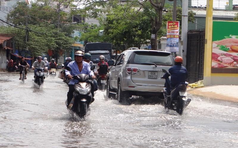 Cảnh ngập ở Sài Gòn chẳng khác chốn thôn quê - ảnh 5